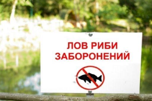 """Результат пошуку зображень за запитом """"заборона вилову риби 2018"""""""